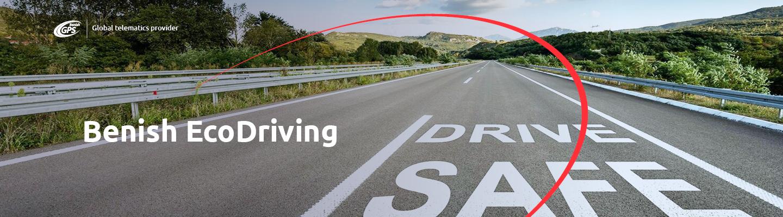 стиль вождения ecodriving